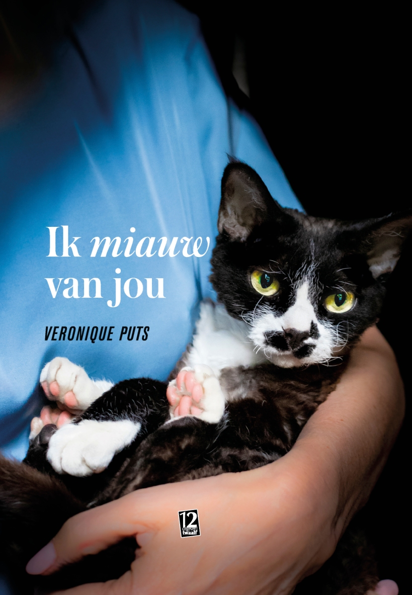 164642_cover Kattenboek HR def_p1