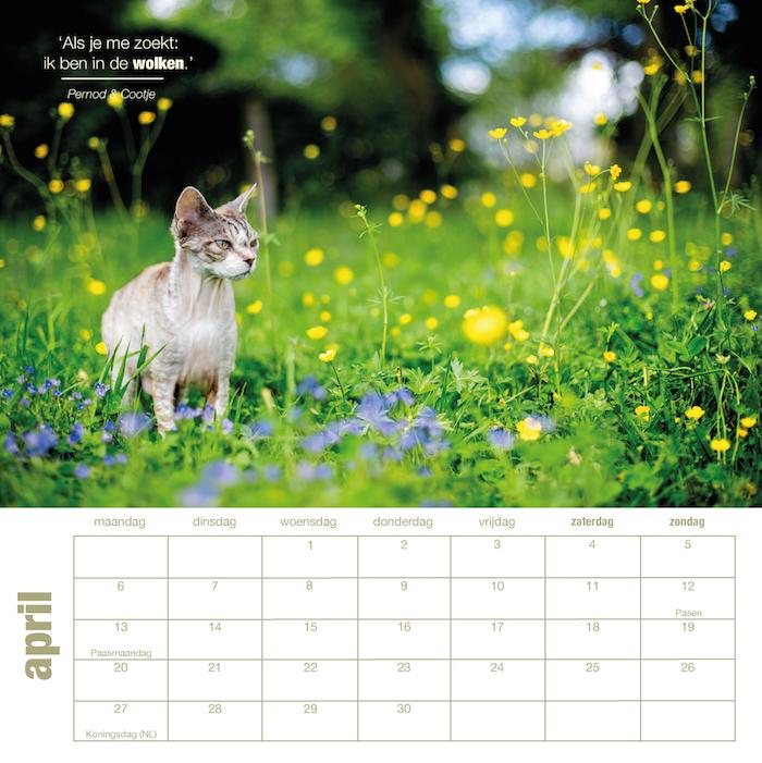 164821_kleine kalender 2020 nazicht en bewerking Pascal_p1-14